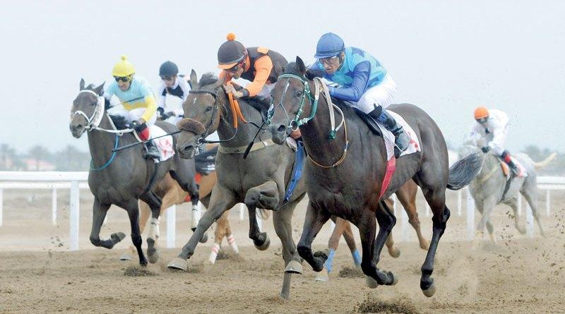 أنواع الرهانات في سباق الخيول
